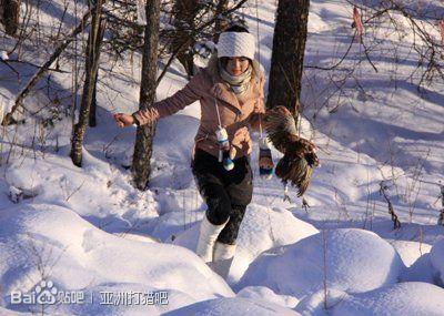 亚洲狩猎美女下午 冬日的斜阳洒在白雪覆盖的沼泽地