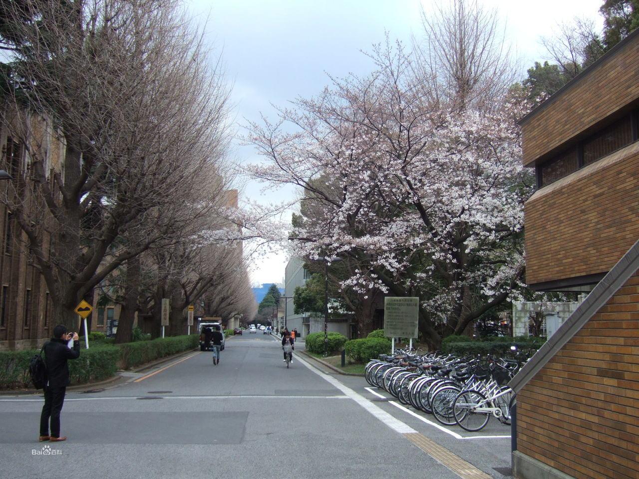 东京大学景观