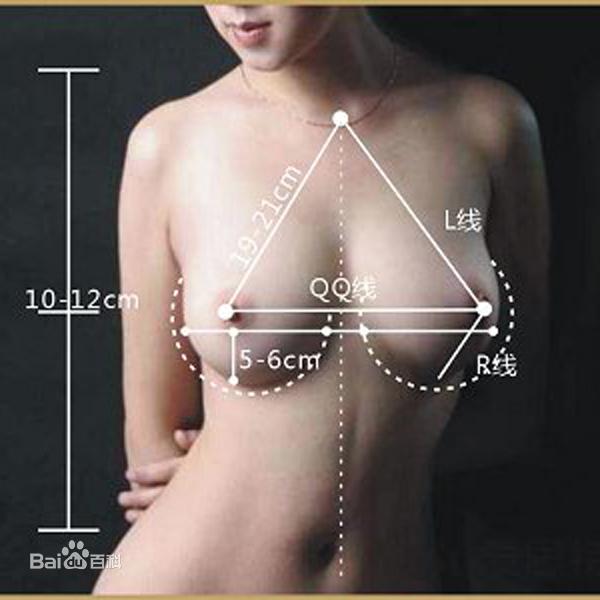 乳房下垂图片 百度百科