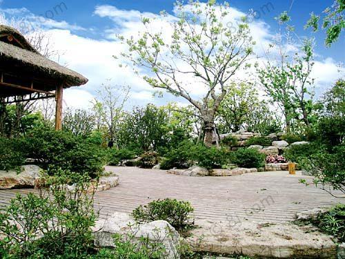杜鹃园,果园区等多个自然景点,还安排了游览观光车,电动游船,水上步行图片