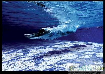 海洋生物是指海洋里的各種生物,包括海洋動物,海洋植物,微生物及病毒圖片