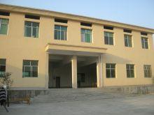 洞村中心学校