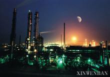 中国石化集团齐鲁石化公司