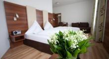 维克图阿连市场酒店