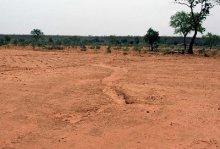 防治荒漠化(图2)