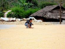 芒翁自然村的村民生活场景