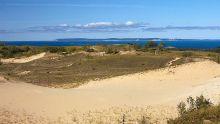 五大湖区沙丘地带