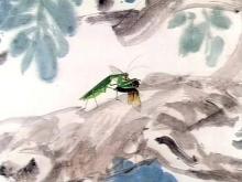 螳螂捕蝉相关图片