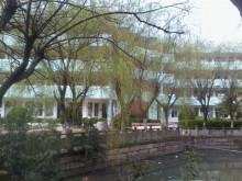 2012南白象中学校园风景
