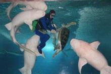 广州动物园海洋馆