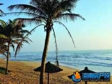 长滩雨林外景图