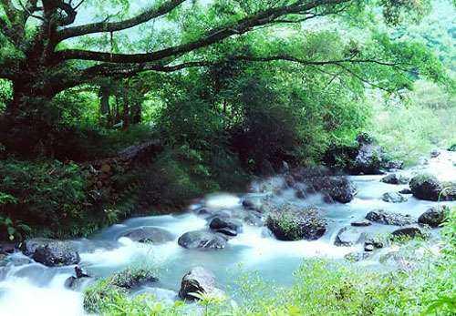 石门国家森林公园,流溪温泉旅游度假区和抽水蓄能电厂旅游区等4个广州图片