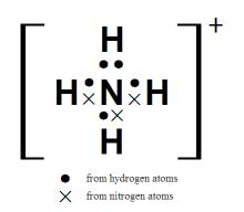 铵根离子的电子式图片