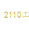 2110����