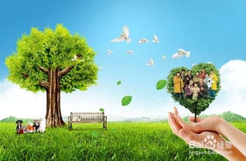 绿色健康硅藻粒厂家