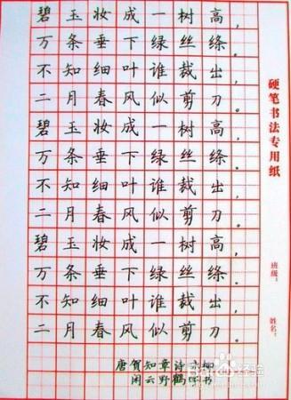在一段时间的训练后就可以使用米字格纸进行自主练习,形成自己的书写图片
