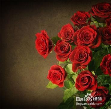 玫瑰果实可食,无糖,富含维他命c,常用于香草茶,果酱,果冻,果汁和面包图片