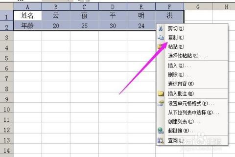 excel表格复制到word文档中怎样把格子去掉?图片