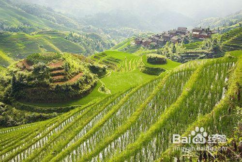 桂林阳朔旅游攻略斗攻略龙珠激图片