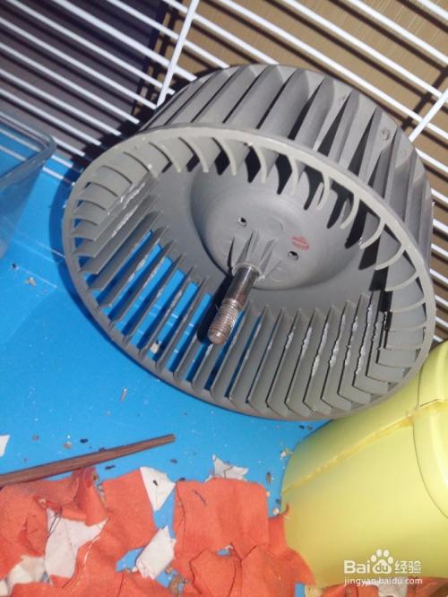 废物利用静音玩具超改造跑轮diy仓鼠单车自制铜陵小蜜蜂仓鼠使用方法图片