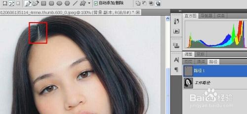 (提示:百度来的妹子) 2 用钢笔工具描边头发 将鼠标点击为【路径】图片