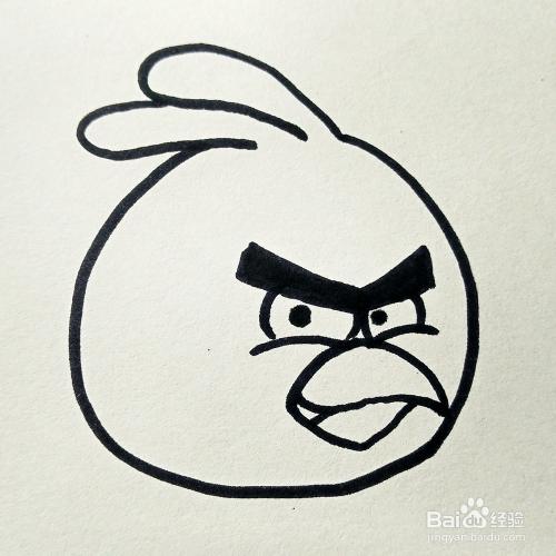 儿童简笔画 愤怒的小鸟