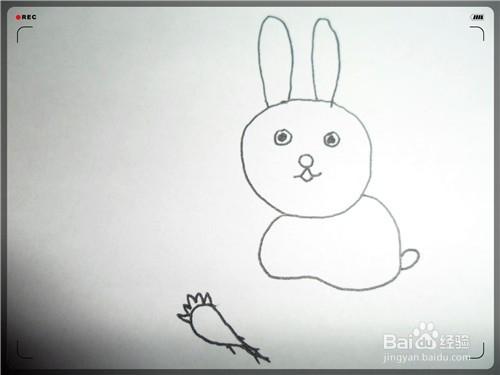 宝宝简笔画小兔子