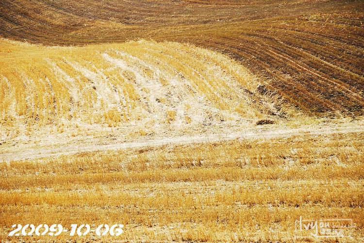 塞罕坝旅游攻略图片107