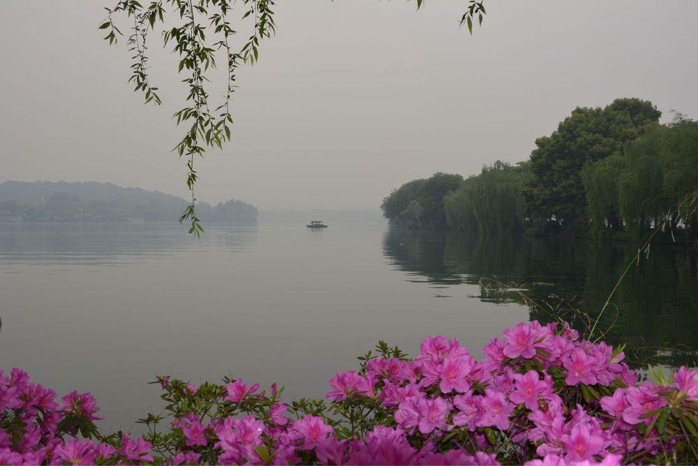 西湖美景三月天来图片