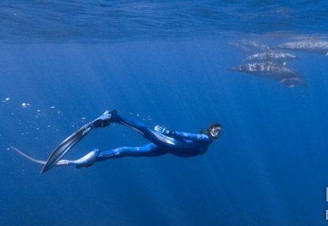 而自由潜水要却必需集合知识与技巧于一身