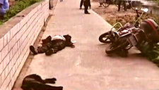 上海男子保护爱犬心切 将偷狗贼掐勒致死