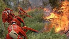 内蒙古千人齐力灭火 大兴安岭火灾火势得到控制