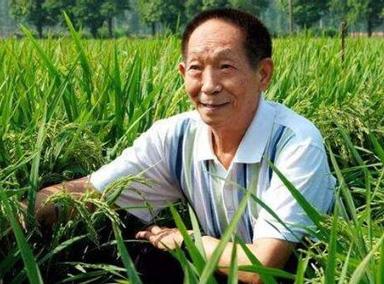 恭喜!88岁袁隆平再获奖