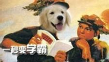【囧闻一箩筐】高校惊现狗学霸!最爱听高数