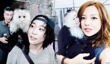 赵薇遭猴子索吻陶醉