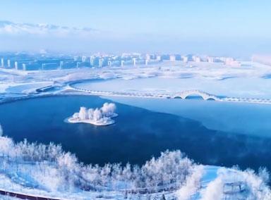 新疆蝶湖树状冰纹似水墨画