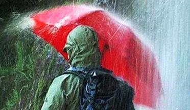 德国最强雨伞,不仅能挡石头,还能开西瓜