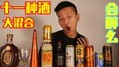 十一种酒混合起来会怎么样?会更容易醉一点么?