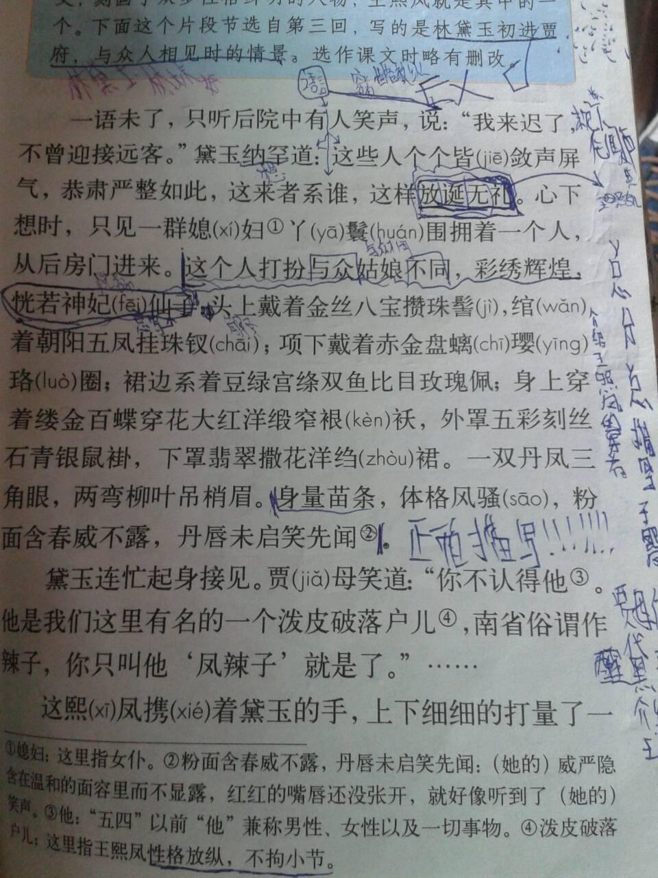 凤辣子初见林黛玉阅读答案图片