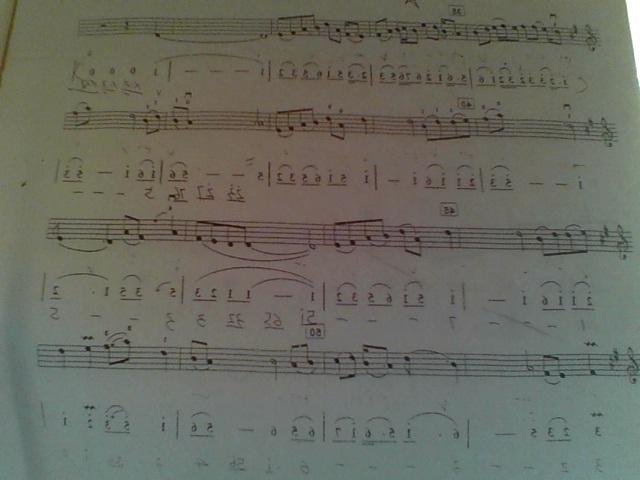 急求《拔根芦柴花》的二胡和扬琴合奏的简谱图片