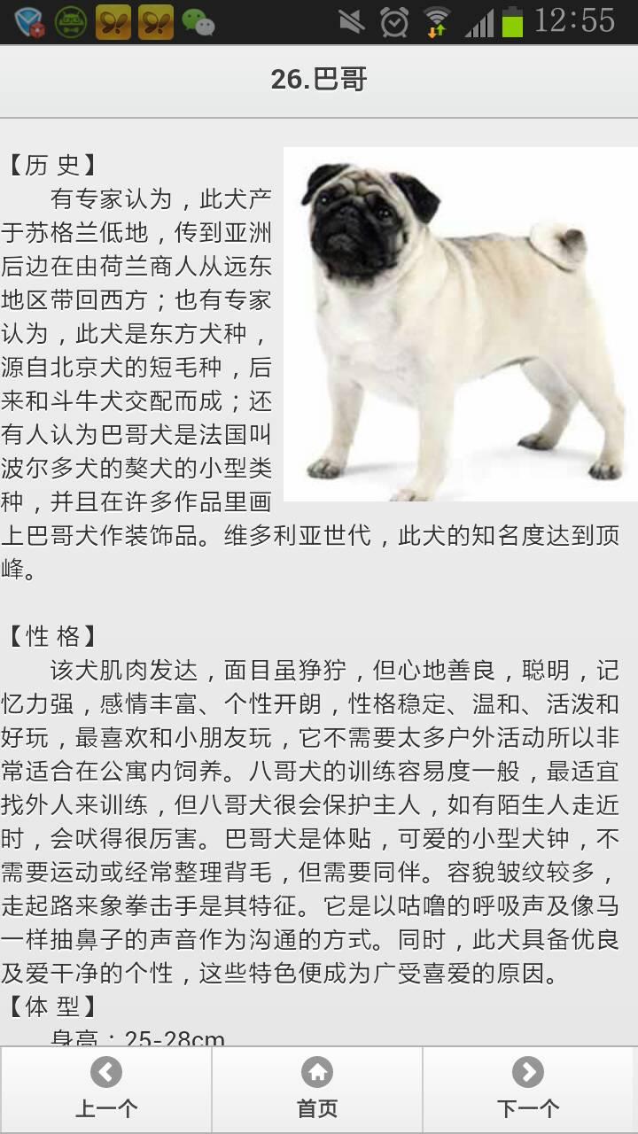 名狗名称及图片大全 _排行榜大全