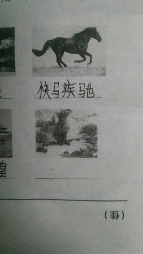 看图画,用四字词语形容图中事物图片