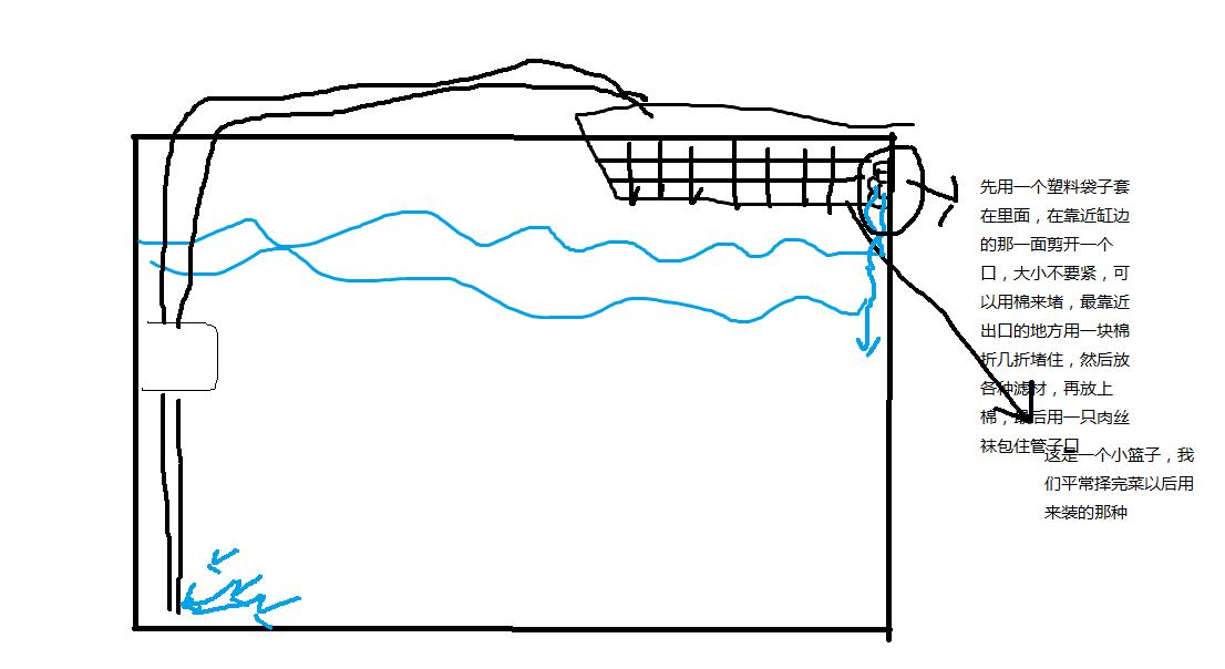 怎么用矿泉水瓶做鱼缸过滤器?