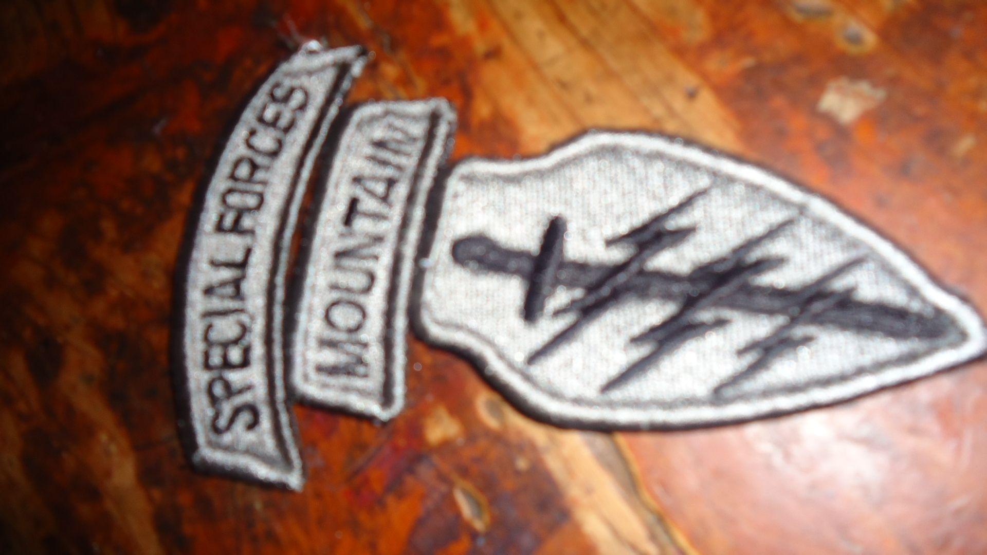 陆军特种部队臂章壁纸 中国陆军特种部队臂章 陆军特种部队臂章图片