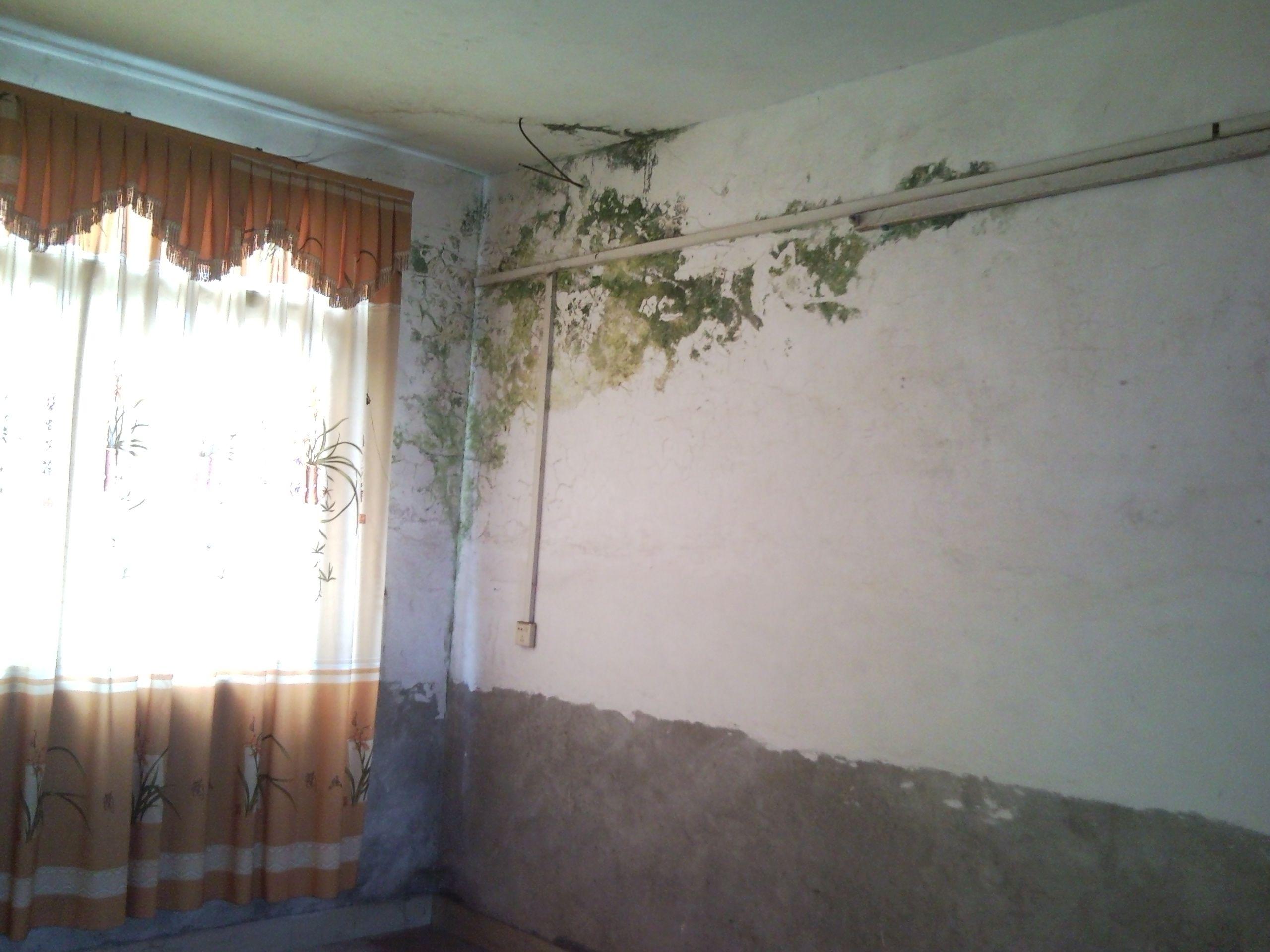 梦见家里房子一面墙倒了