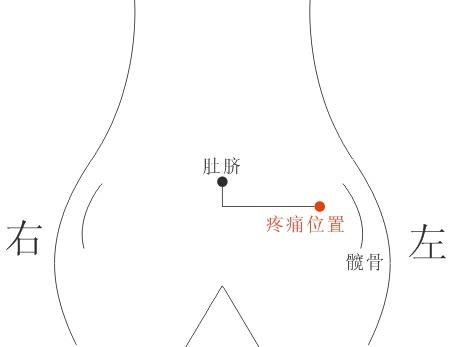 胃在哪里?肚子 左边 还是右边 还是中间    (1 ) 左图片