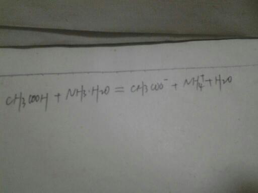 氨水水解离子方程式