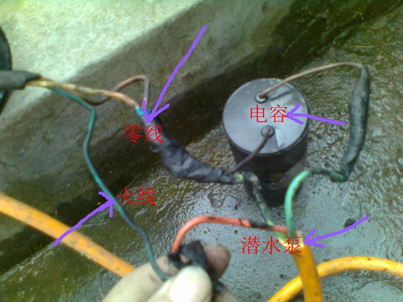 (有图有真相)请高人解答家用潜水泵与电容接线方法?图片