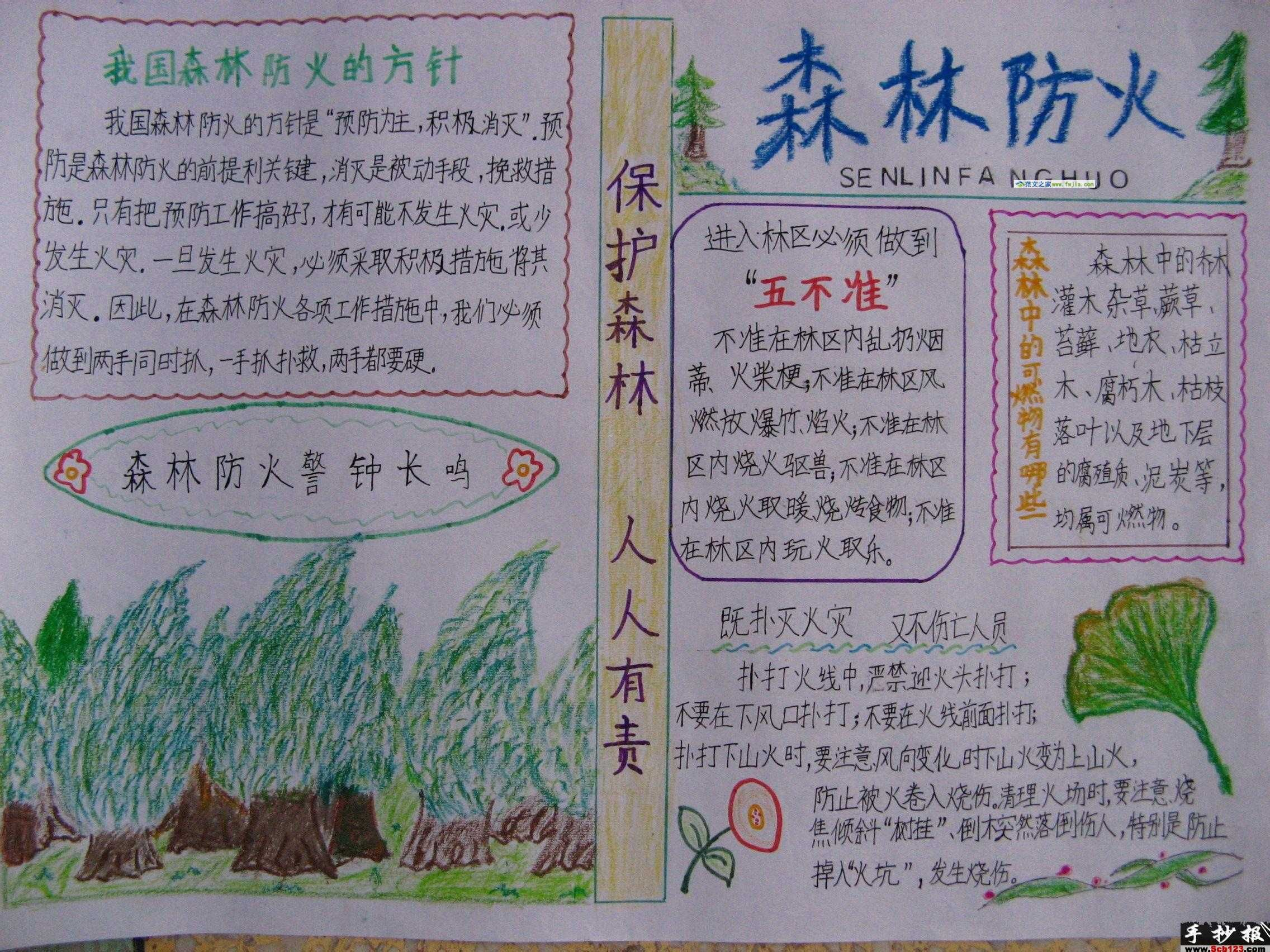 安全知识手抄报 森林防火高清图片