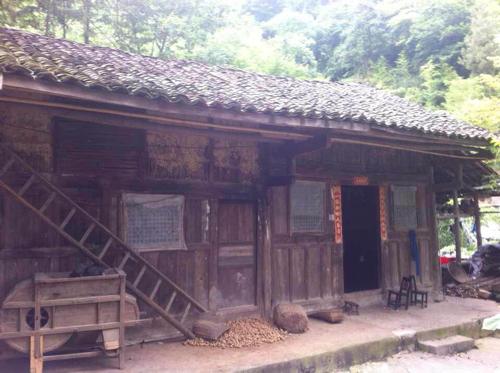 农村房子设计图两层